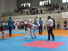 Sara Cobos logró el segundo puesto en categoría junior de  más de 63 kilos