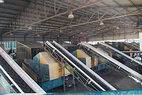 Interior de la almazara ruteña donde se clasifican  las aceitunas