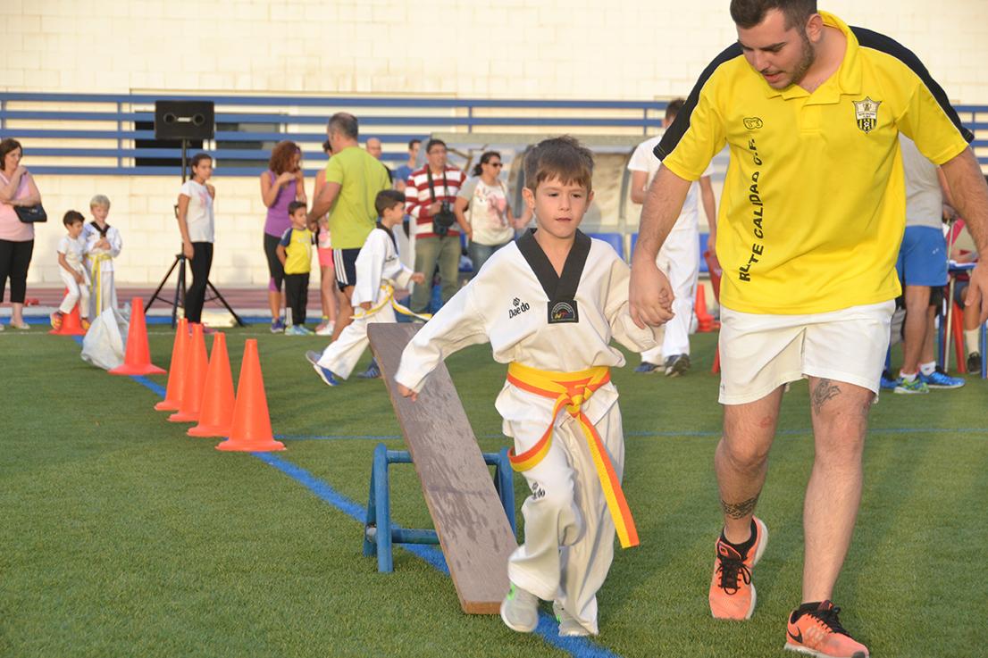 circuitotaekwondo